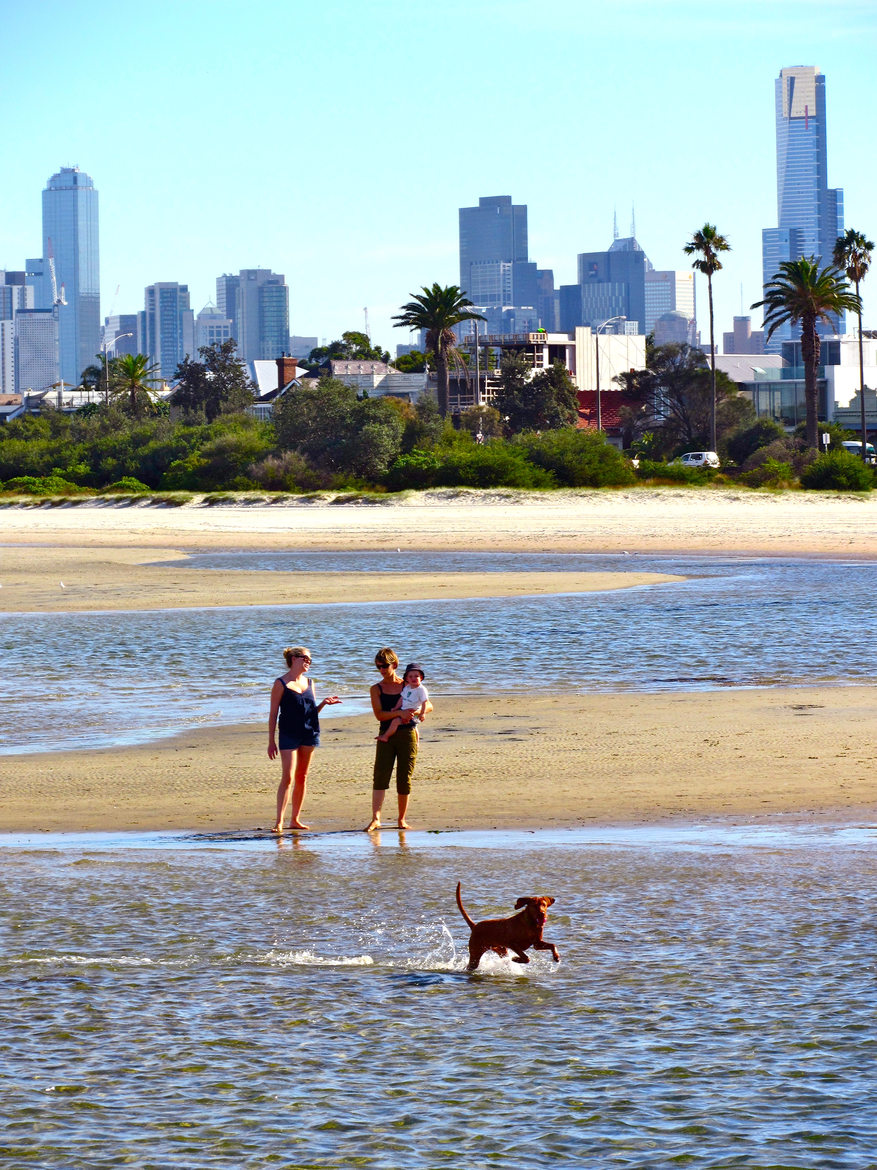 Best Dog Walks Melbourne