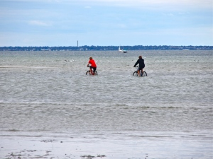 New Port Philip Cycle Trail