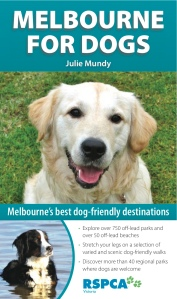 Melbourne for Dogs - who could resist that brown-eyed retriever?  Not me!