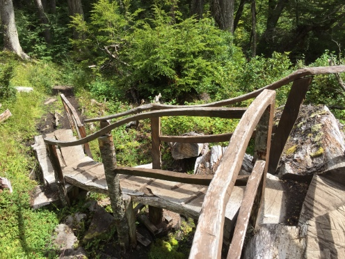 Some creative woodworking along the trail up the hill - using the fallen trees where they lay to make bridges!